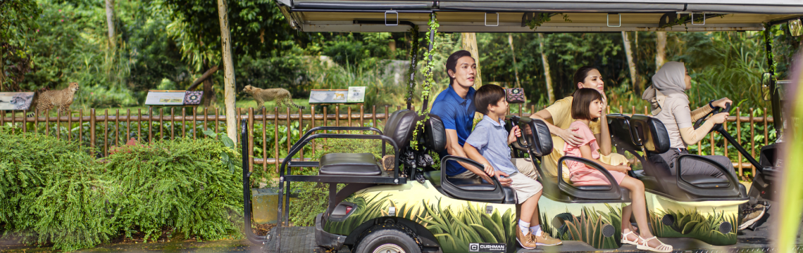 Private Buggy Tour.png-1140x360